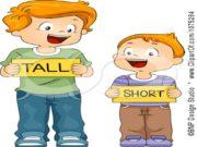 STRONG THINBIG SMALLShort or tall? tall short. Short
