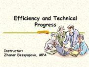 Efficiency and Technical Progress Instructor: Zhanar Dessyupova, MPAMajor