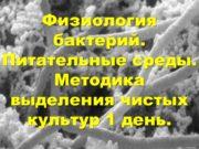 Физиология бактерий. Питательные среды. Методика выделения чистых культур