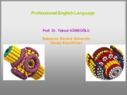 Professional English Language Prof. Dr. Yüksel KÖSEOĞLU Suleyman