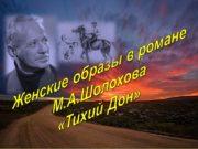Женские образы в романе М.А.Шолохова «Тихий Дон» Женские