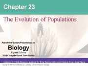 Chapter 23 The Evolution of Populations. Overview: The