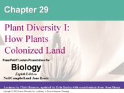 Chapter 29 Plant Diversity I: How Plants Colonized