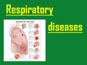 Respiratory diseases. Respiratory structures such as the airways,
