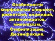 Особенности морфологии спирохет, риккетсий, хламидий, актиномицетов, микоплазм. Стерилизация.