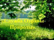 «Служба Охраны Природы» Экологическое образование «Зелёный Новый Год»