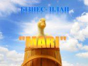 Бізнес- план «MARI» ПП «MARI» Наша адреса: Тернопільська