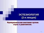 1 ЭСТЕЗИОЛОГИЯ (2 -я лекция) Функциональная анатомия органа