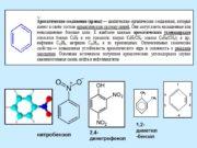 нитробензол 2,4- динитрофенол 1,2- диметил-бензол Рис. 3.1. Изотермы