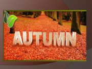 Autumn is one of the four seasons. It