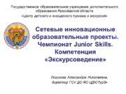 Сетевые инновационные образовательные проекты. Чемпионат Junior Skills. Компетенция