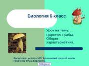 Биология 6 класс Урок на тему: Царство Грибы.