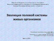 Российский Государственный Социальный Университет Факультет Информационных