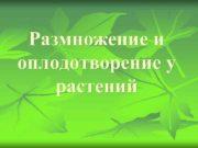 Размножение и оплодотворение у растений