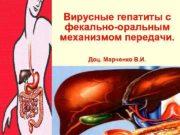 Вирусные гепатиты с фекально-оральным механизмом передачи.  Доц.