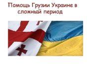 Помощь Грузии Украине в  сложный период