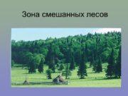 Зона смешанных лесов Физико-географическое положение В России смешанные
