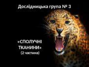 Дослідницька група № 3  «СПОЛУЧНІ ТКАНИНИ» (2