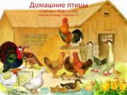 Домашние птицы г. Лебедянь МБДОУ д.с.№2 учитель-логопед :