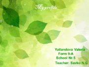 My profile Yutlandova Valeria Form 9-A School №