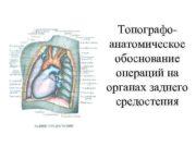 Топографо- анатомическое обоснование  операций на органах