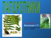 Автор презентации: Васюкова Н. П. Учитель географии и