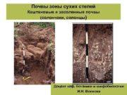 Почвы зоны сухих степей Каштановые и засоленные