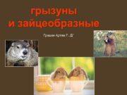 грызуны и зайцеобразные Гришин Артем 7
