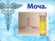 Моча.  Моча (лат. urina) —  биологическая