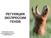 РЕГУЛЯЦИЯ ЭКСПРЕССИИ   ГЕНОВ  Резяпкин
