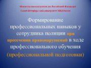 Министерство внутренних дел Российской Федерации Санкт-Петербургский университет