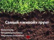 Самый «живой» грунт Выполнили Владимирова Елена