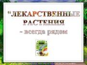 Лазарева Лидия Андреевна, учитель начальных классов, Рижская основная