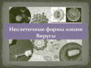 Неклеточные формы жизни Вирусы  Вирусы как живые