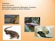 3 февраля Классная работа Разнообразие рептилий. Крокодилы. Значение
