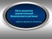 Пути развития экологической безопасности региона Корнев А.