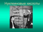Нуклеиновые кислоты  НУКЛЕОЗИДЫ И НУКЛЕОТИДЫ Ф. Мишер
