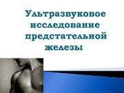 Ультразвуковое исследование предстательной железы  Функции предстательной железы