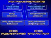 ЭЛЕКТРОННАЯ МИКРОСКОПИЯ СКАНИРУЮЩАЯ МИКРОСКОПИЯ метод напыления метод замораживанияскалывания