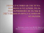 Подготовила студентка 2 курса ПБ-СД 21: Ермешева А