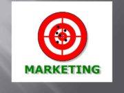 Система маркетинга:  Концепции Производственная концепция Сбытовая концепция
