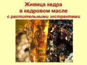 Живица кедра в кедровом масле с растительными экстрактами