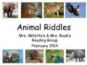 Animal Riddles Mrs. Millette's & Mrs. Rook's Reading