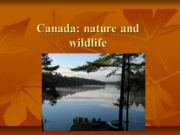Canada: nature and wildlife Parks and Protected Areas