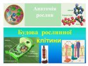 Анатомія рослин Будова рослинної клітини Гурток 23.10.11 о