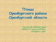 Птицы Оренбургского района Оренбургской области Команда добровольцев МБОУ
