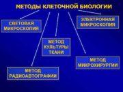 МЕТОДЫ КЛЕТОЧНОЙ БИОЛОГИИ ЭЛЕКТРОННАЯ МИКРОСКОПИЯ СВЕТОВАЯ МИКРОСКОПИЯ МЕТОД