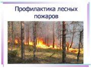 Профилактика лесных пожаров Лесной пожар это