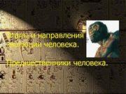 Этапы и направления эволюции человека Предшественники человека