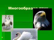 Многообразие птиц Паспортные данные птиц певцы